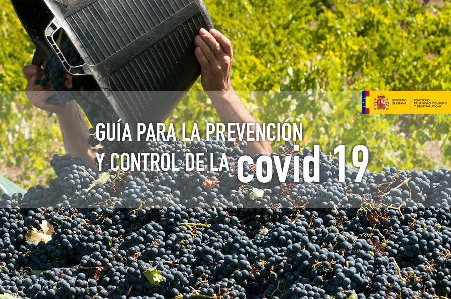 RECOMENDACIONES FRENTE AL COVID 19