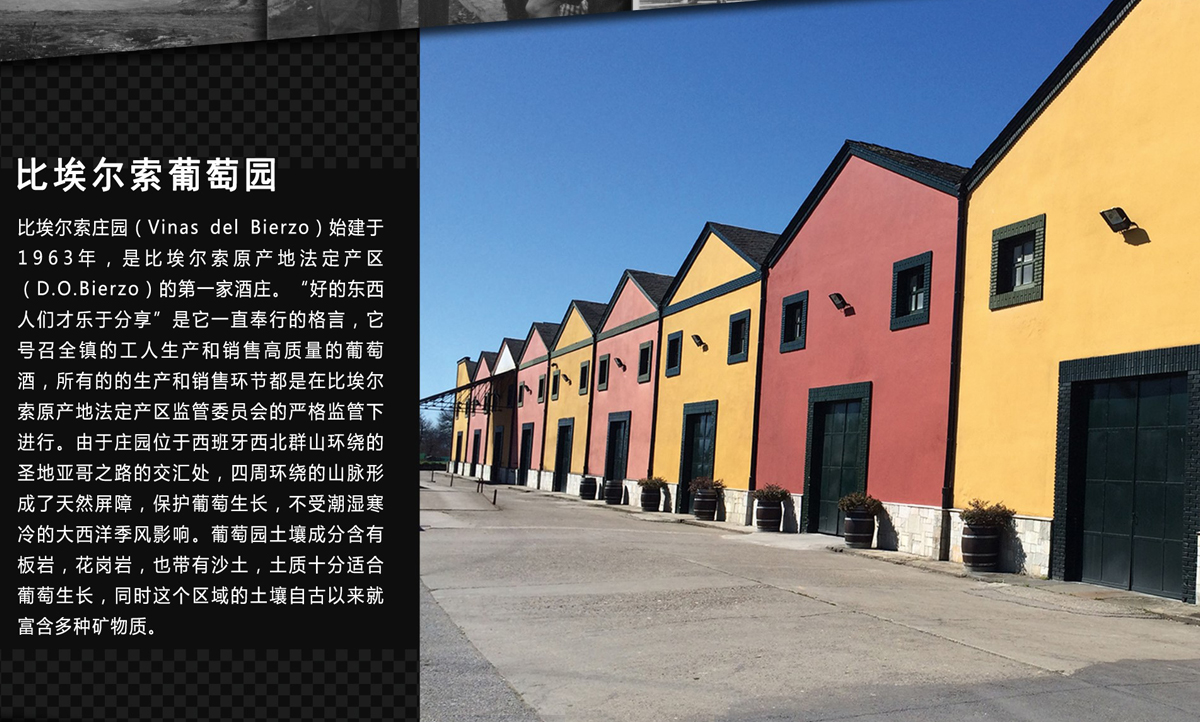 China. Viñas del Bierzo se promociona en el gigante asiático